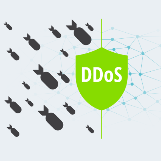 Flowmon - DDOS PROTECTION FOR BUSINESS CRITICAL SYSTEMS